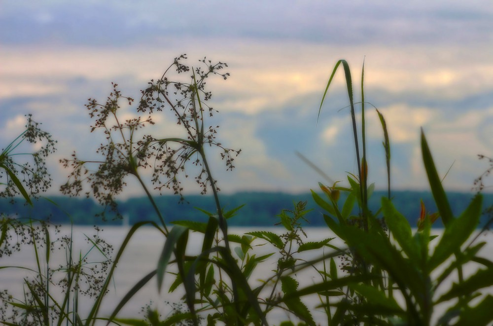 grass_water&clouds_HDR2-1280