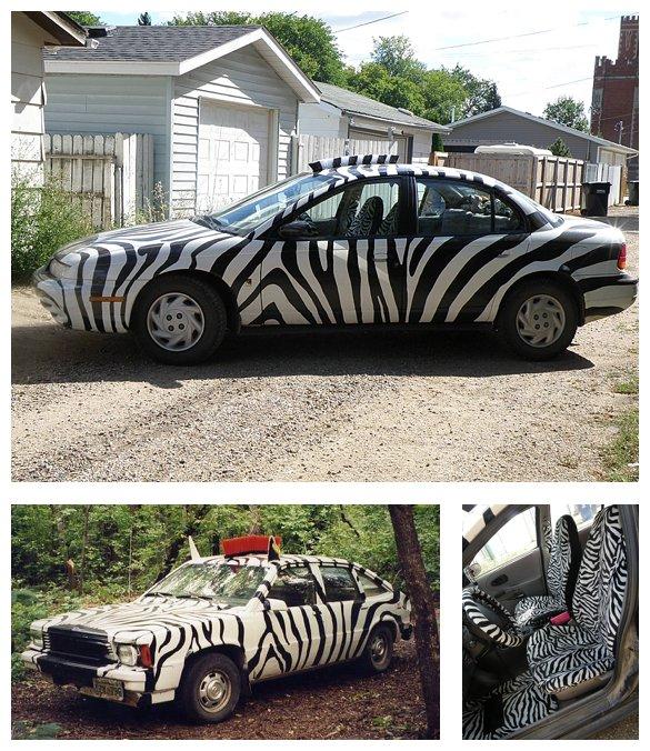 zebracar