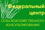 posad_banner_4.jpg