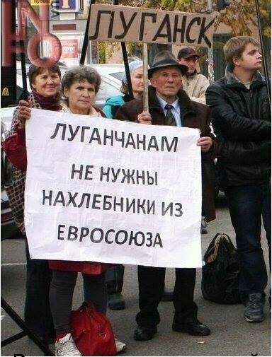 Глава Луганской ОВГА: У нас 70-75% жителей вообще никогда не выезжали с территории области - Цензор.НЕТ 8128