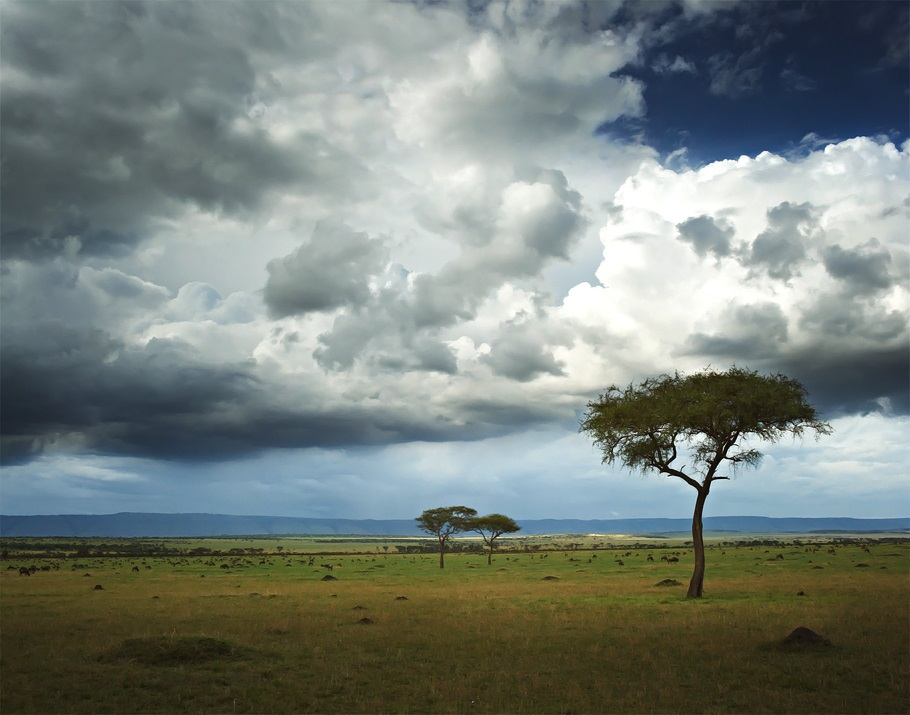 Adelto-Singita-Mara-River-Tented-Camp-Tanzania-10