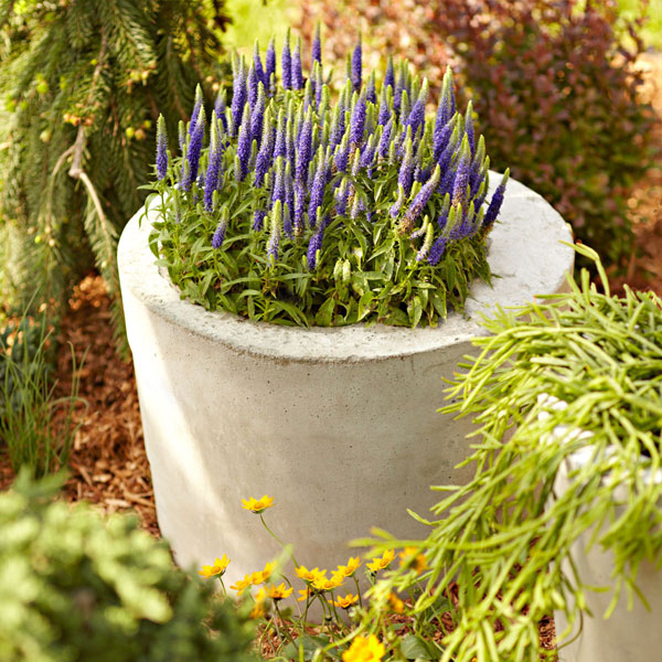 01-Concrete-planter-101741177