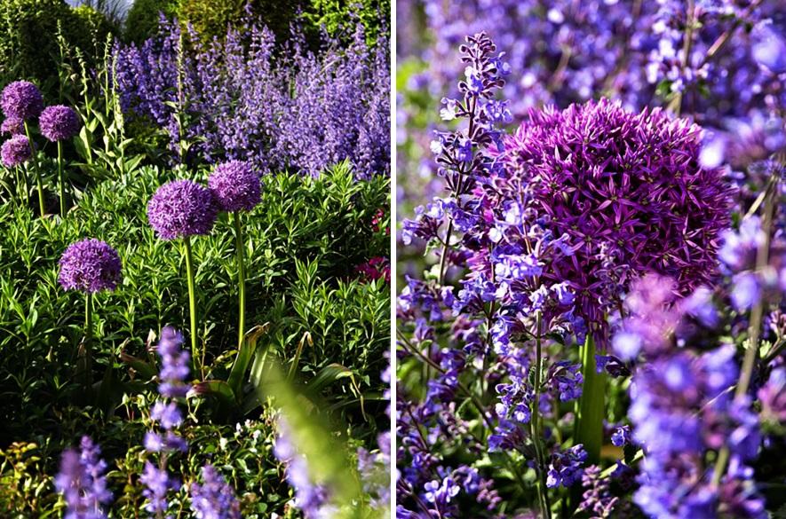 Der perfekte Garten Zuhause Wohnen 2