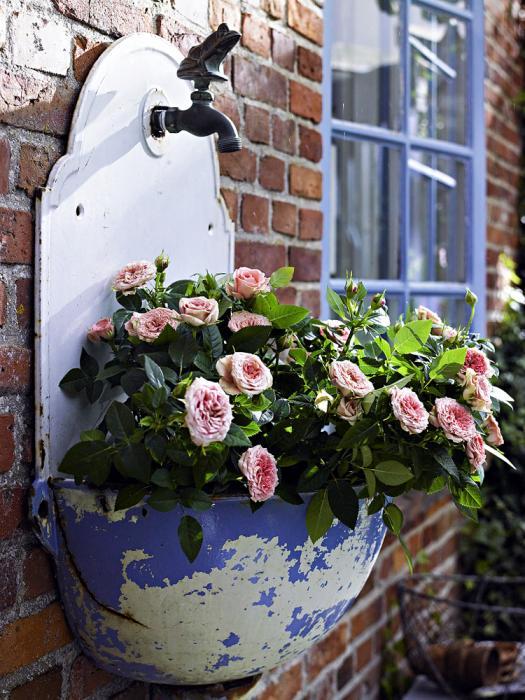 Zuhausewohnen Garten 15