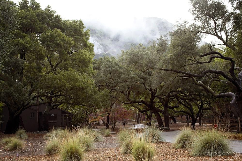 ELLE DECOR Southern California Horse Ranch 4