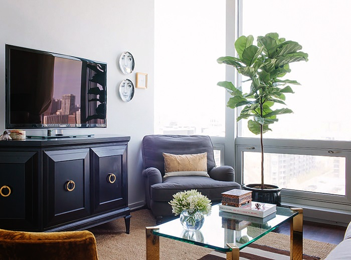 Design Sponge In Chicago An Apartment with a Sartorial Approach 7