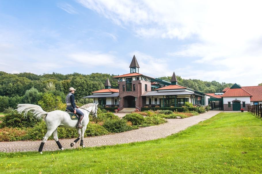 ADELTO Horse Farm & Сottage Germany 2
