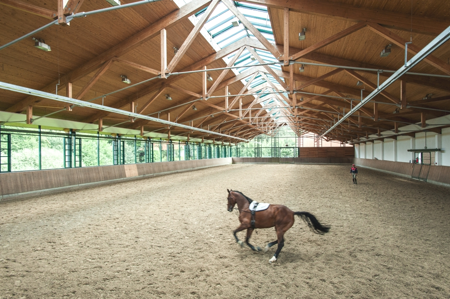 ADELTO Horse Farm & Сottage Germany 7
