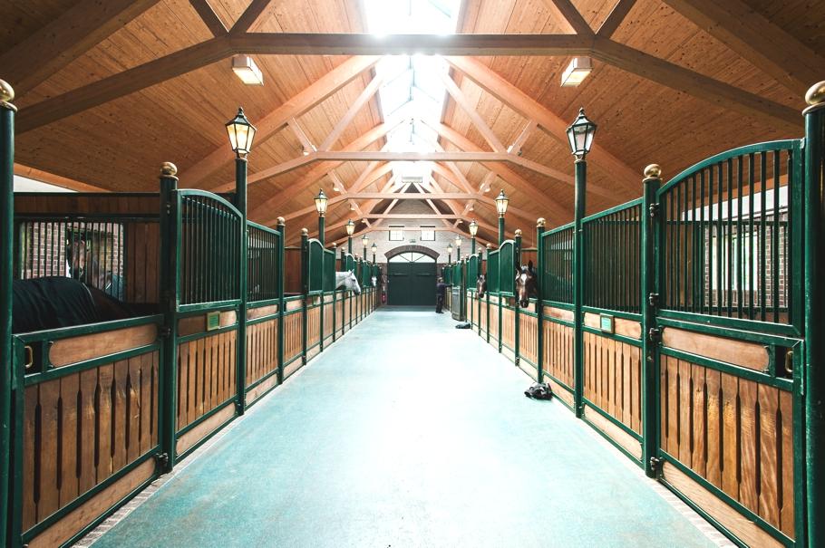 ADELTO Horse Farm & Сottage Germany 8