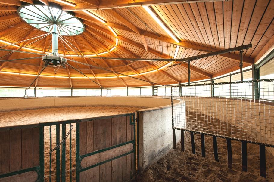 ADELTO Horse Farm & Сottage Germany 9