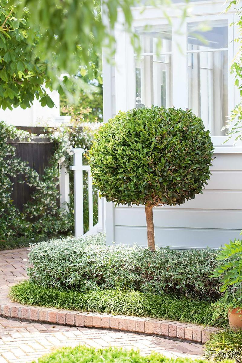 NZ House and Garden McDonnell 5