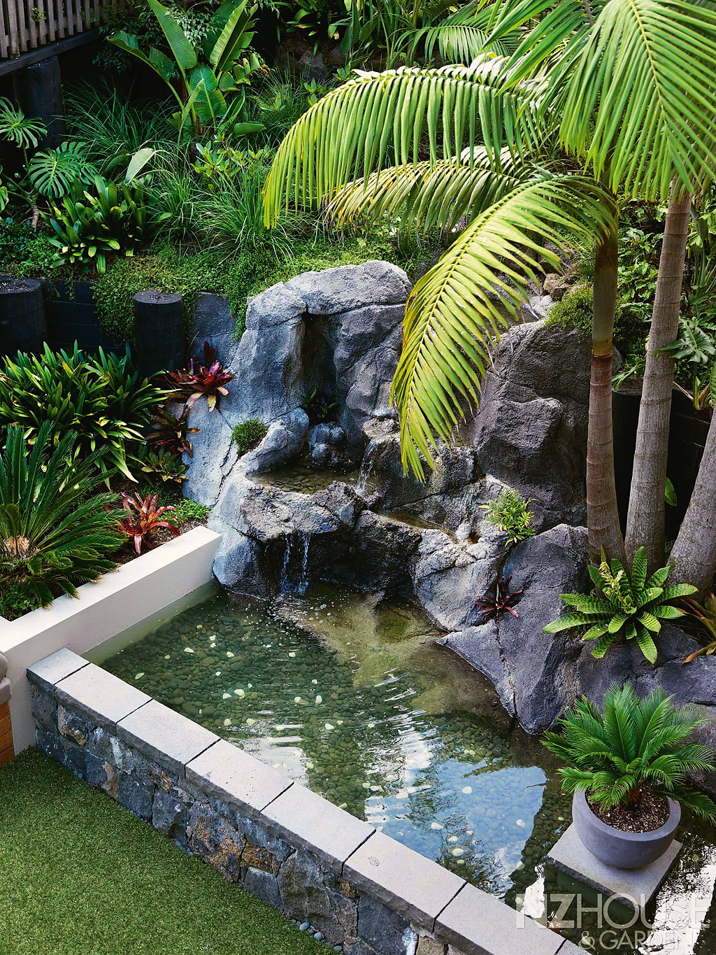 Tropical-courtyard-garden-5