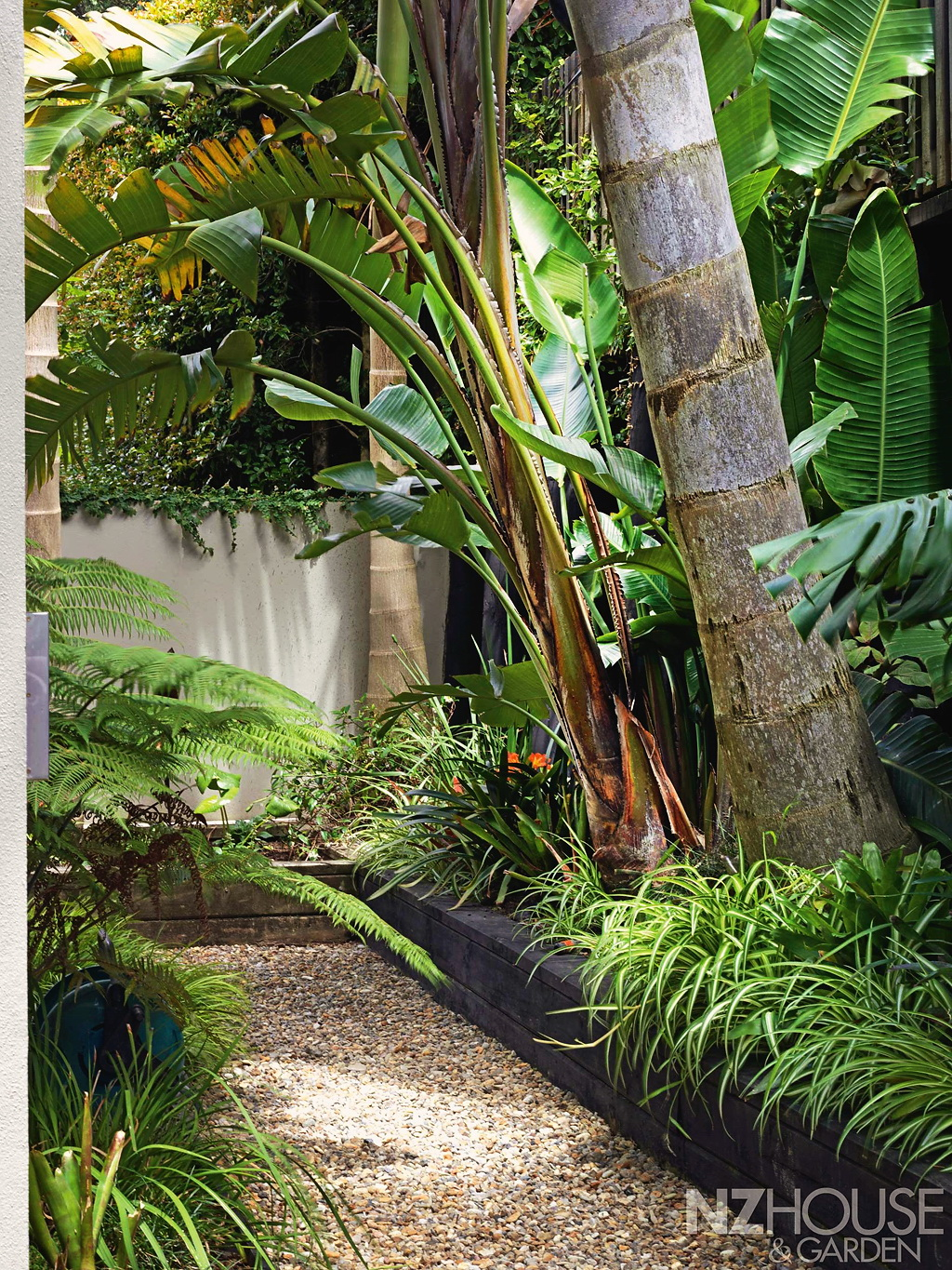 Tropical-courtyard-garden-9