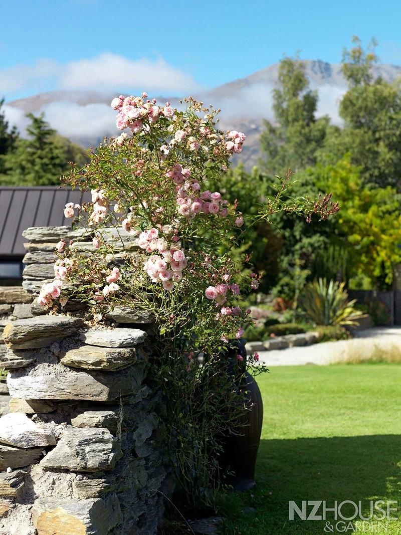 NZ-House-and-Garden-Striking-gold-13