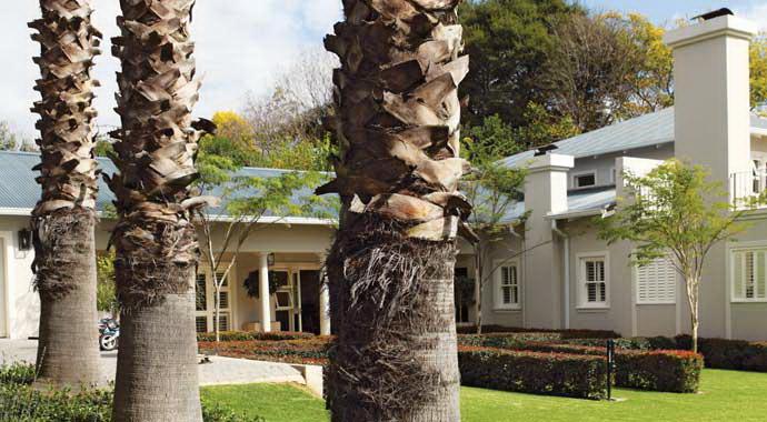 Дом в ЮАР 10