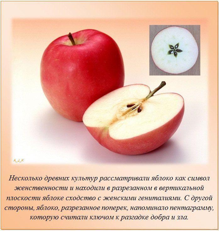 яблоко-жен