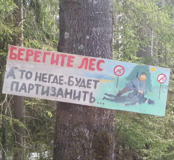 Берегите лес.jpg