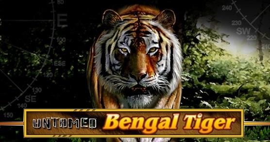 Дикий бенгальский тигр   UntamedBengalTiger