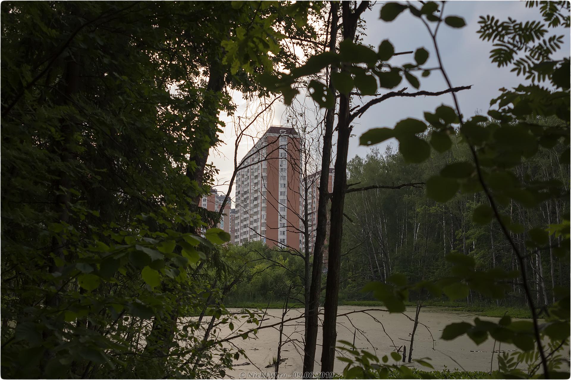 3. Вид на дома в Московском из Ульяновского лесопарка © NickFW.ru - 09.06.2019г.