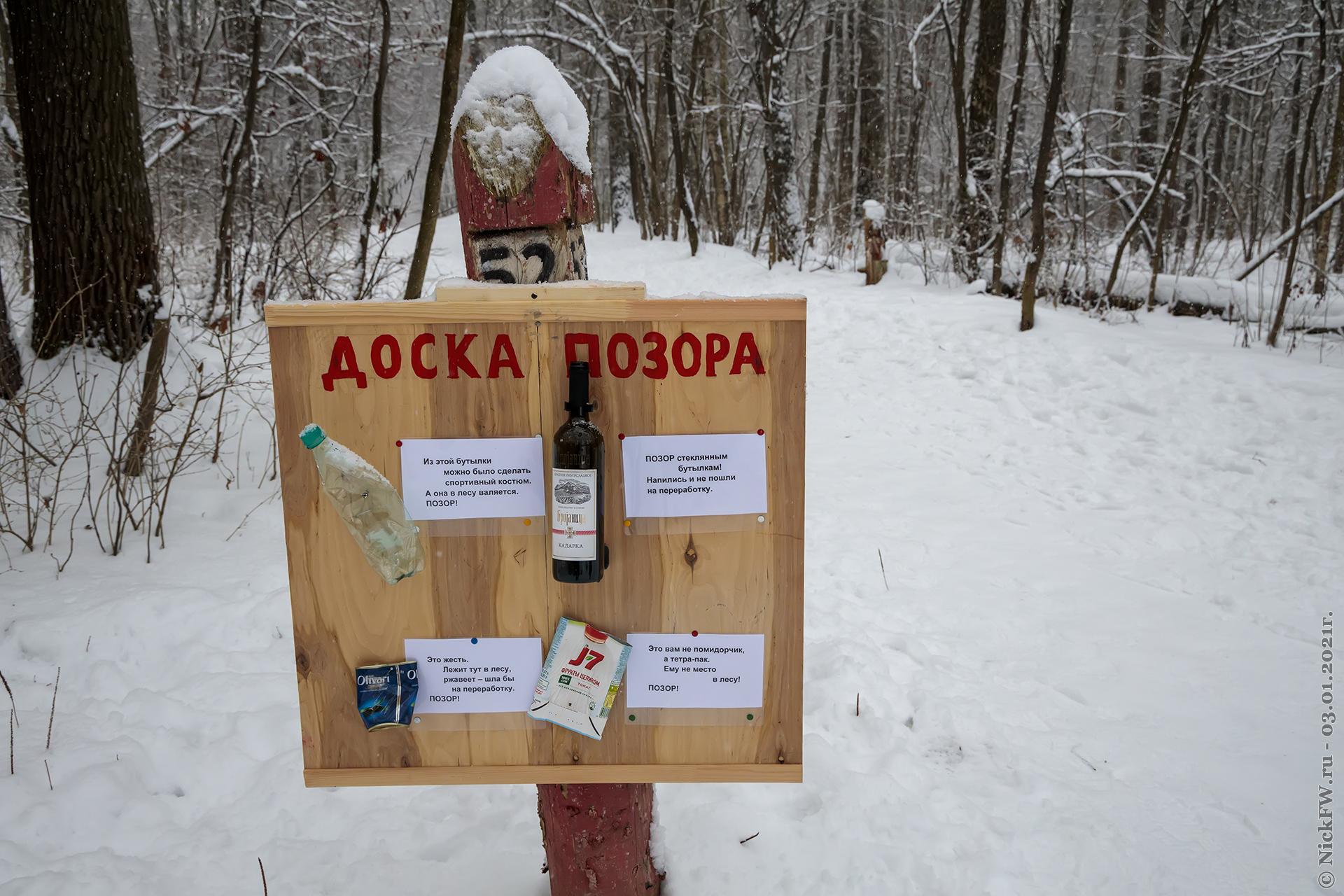 14. Доча в Ульяновском лесопарке © NickFW.ru - 03.01.2021г.