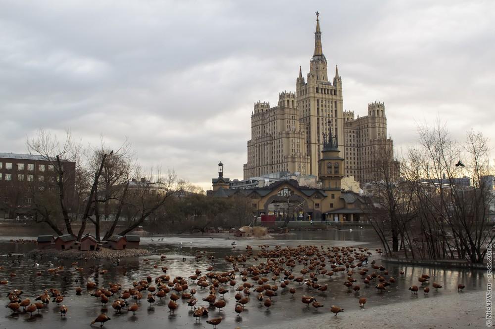 1. Высотка на Кудринской площади и центральный пруд Московского зоопарка © NickFW.ru — 17.11.2018г.