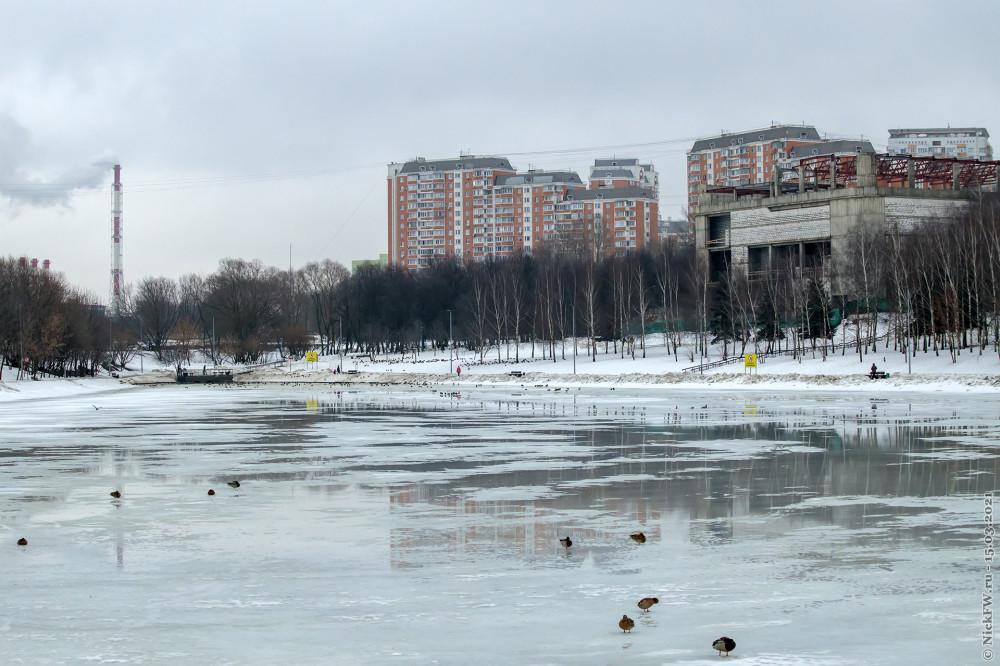 3. Лужи на пруду © NickFW.ru — 15.03.2021г.