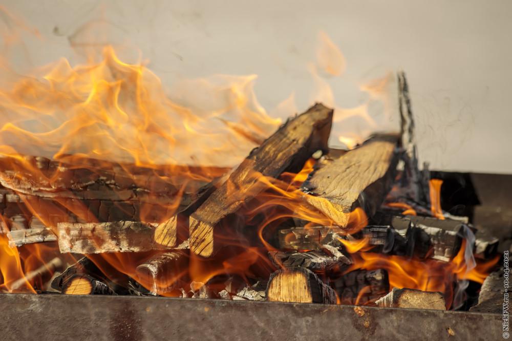1. Берёзовые дрова в мангале © NickFW.ru — 10.04.2021г.