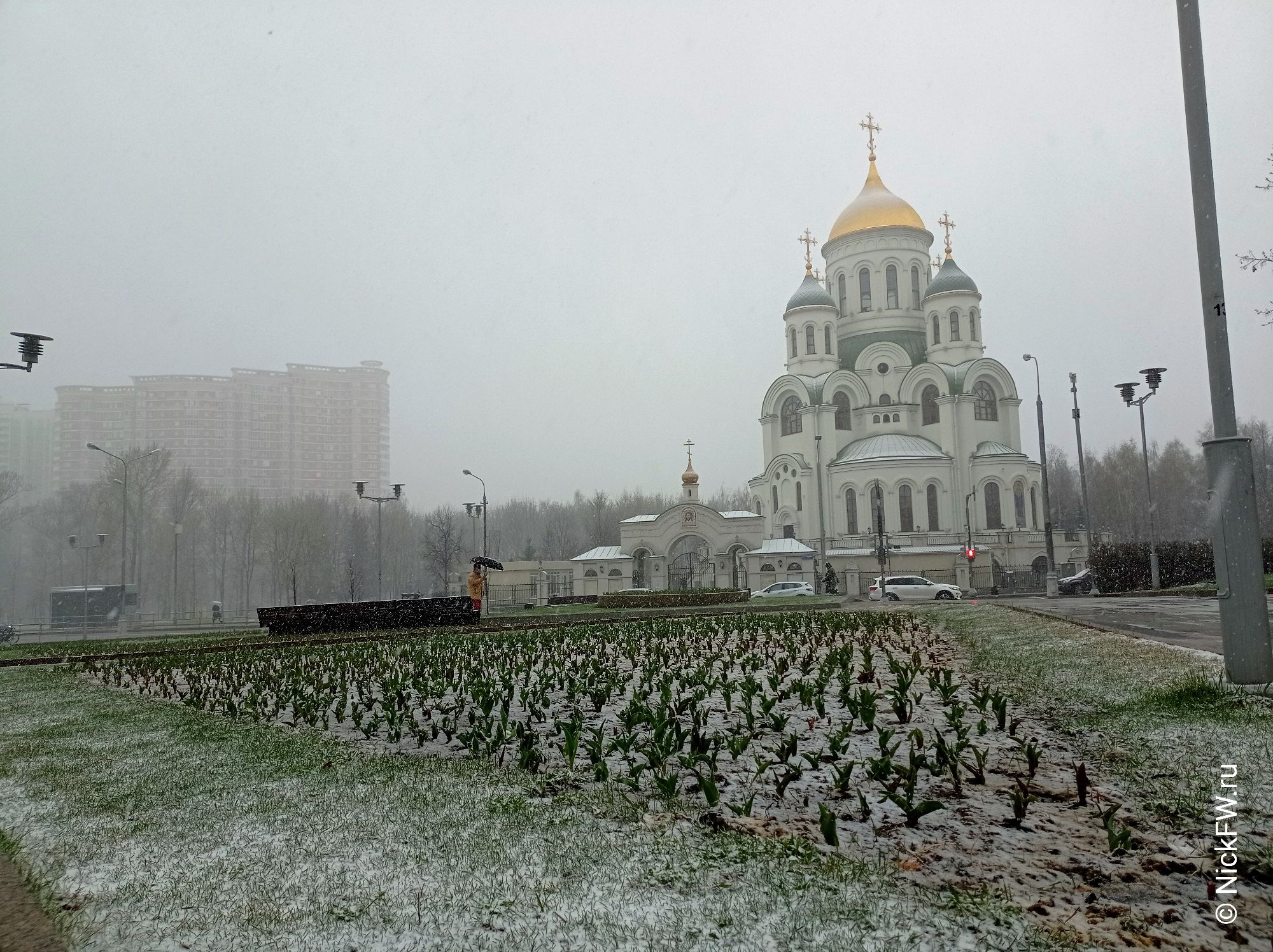 2. Храм и тюльпаны © NickFW.ru - 27.04.2021г.