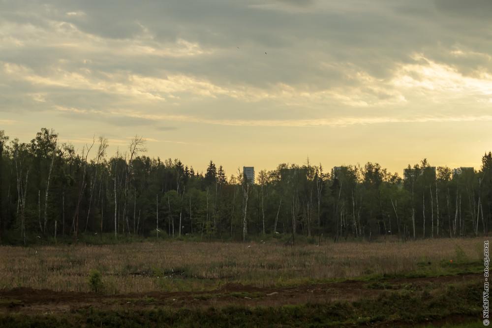 5. Чайки на восходе за окном © NickFW.ru — 20.05.2021г.