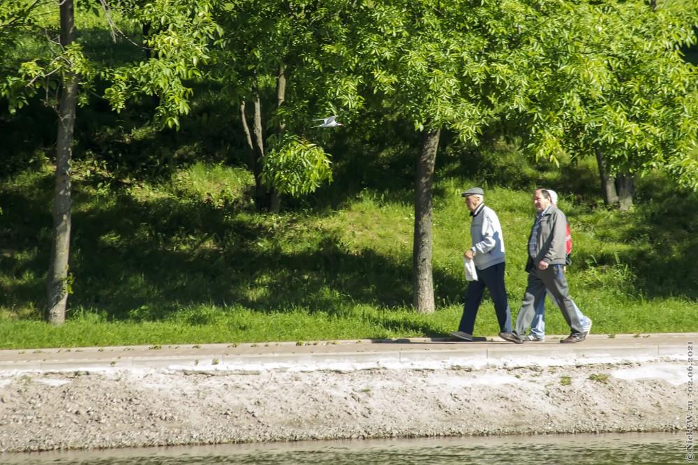 5. Пешеходы и крачка © NickFW.ru — 02.06.2021г.