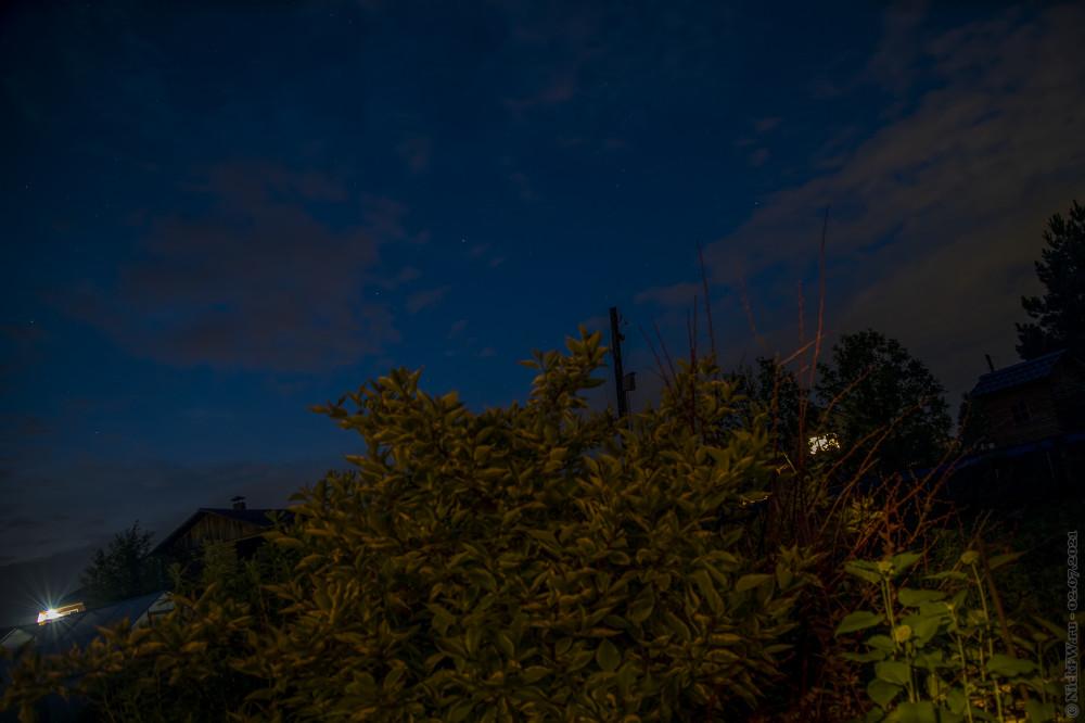 2. Звёздное небо и кусты © NickFW.ru — 02.07.2021г.