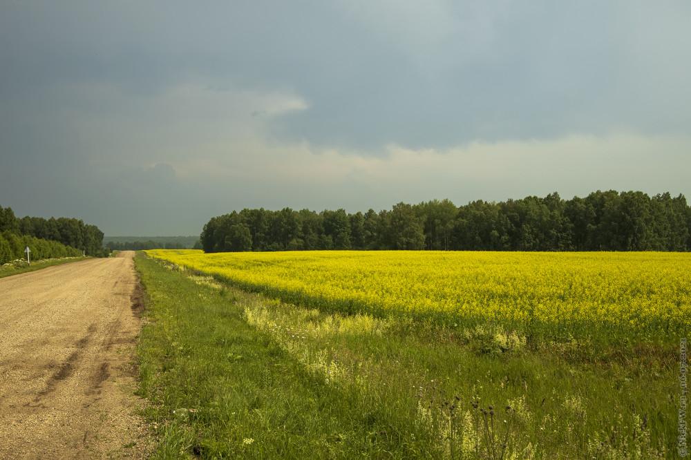 1. Дороги и поля © NickFW.ru — 06.07.2021г.