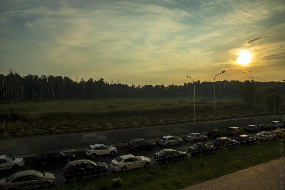 3. Утреннее солнце... © NickFW.ru — 02.08.2021г.