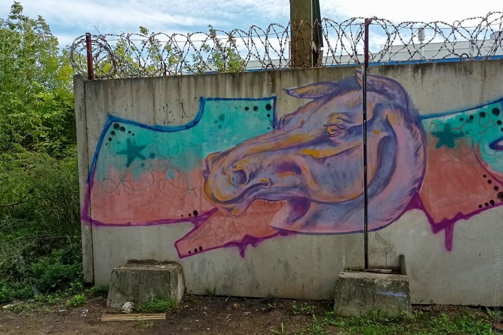 Граффити в пос. Силикатного завода © NickFW.ru — 15.08.2021г.