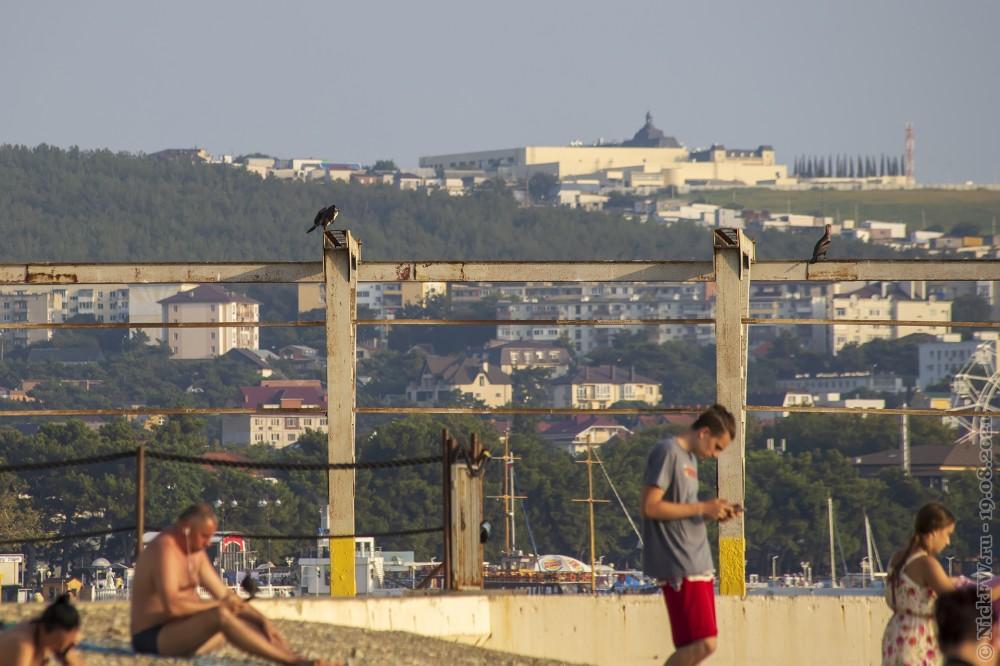 4. Бакланы и отдыхающие © NickFW.ru — 18.08.2021г.