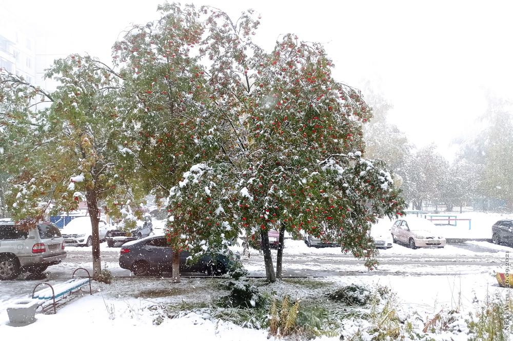 2. Сентябрьский снегопад © NickFW.ru  —  26.09.2021г.