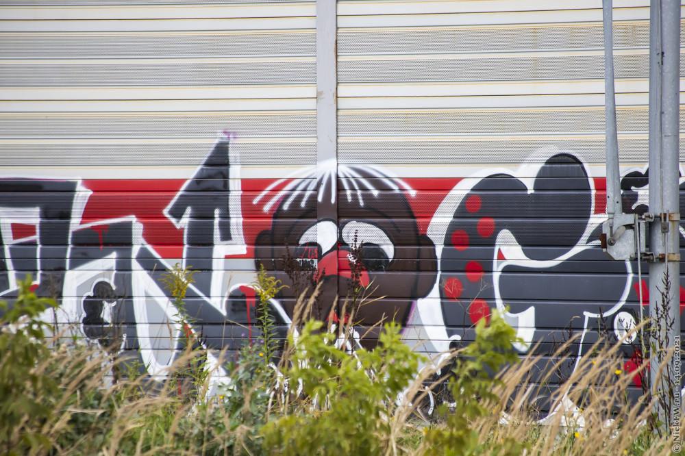 5. Граффити на шумке ЖД © NickFW.ru — 14.09.2021г.