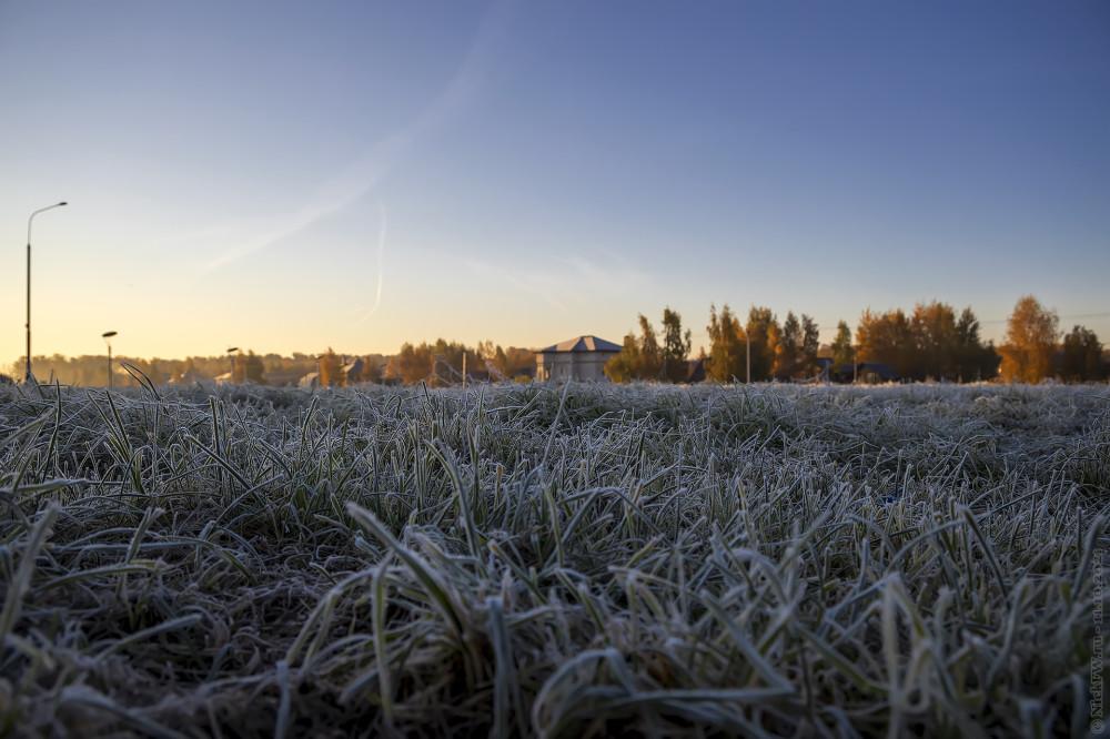 Зелёный газон в инее © NickFW.ru — 11.10.2021г.
