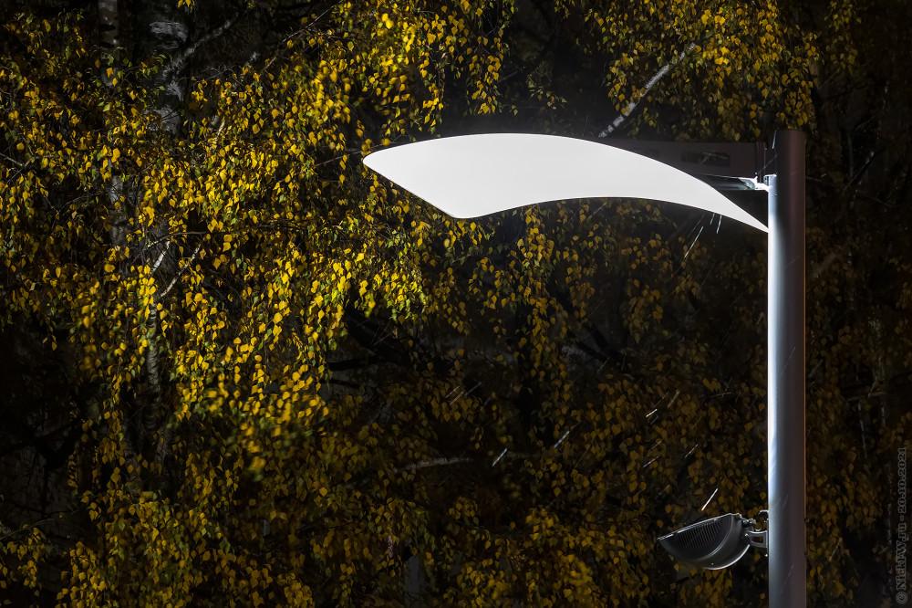Фонарь на ул. Бианки © NickFW.ru — 20.10.2021г.