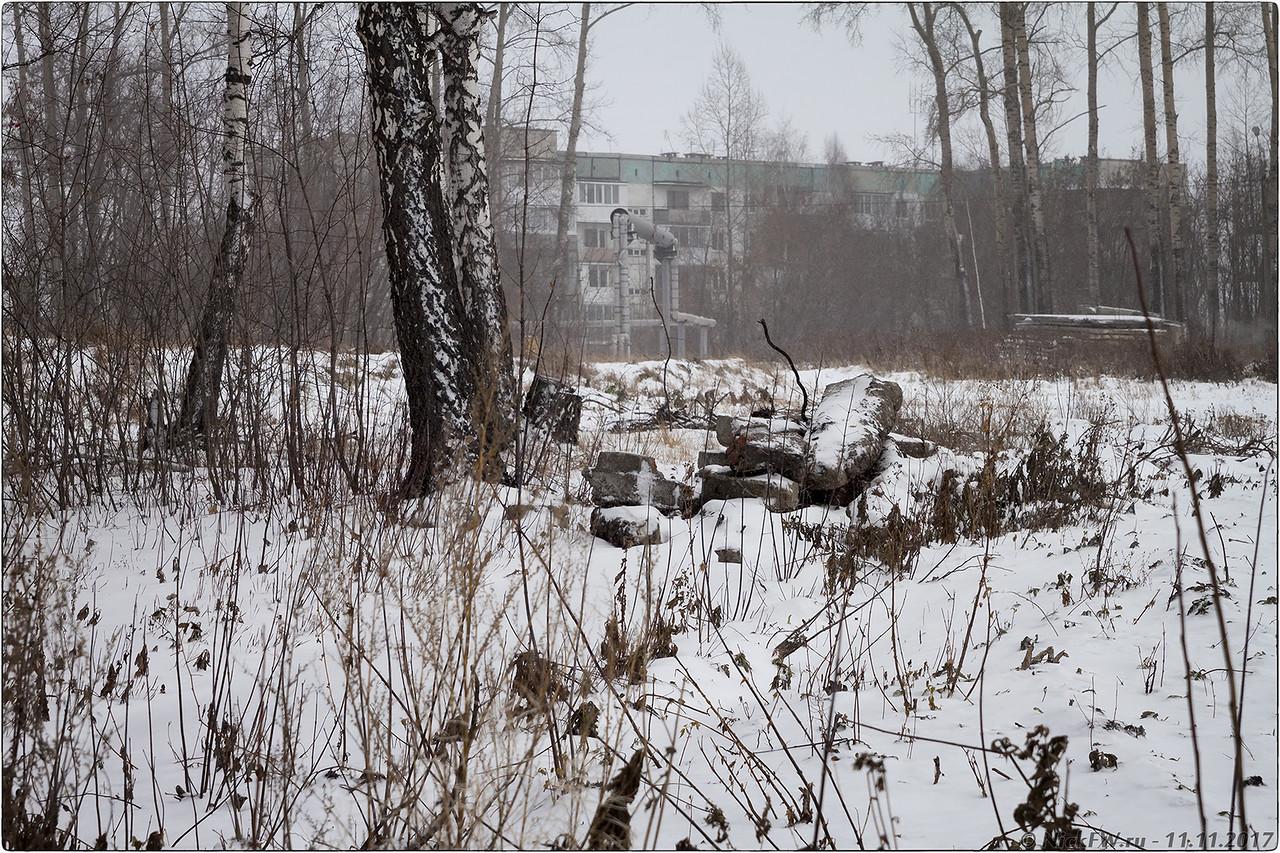 Окраина рощи с видом на дома ВГСЧ [© NickFW - 11.11.2017]