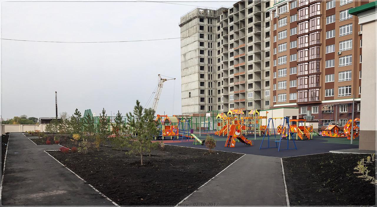 Кедры и детская площадка во дворе пр.Притомский 31/2 [© NickFW - 02.10.2017]