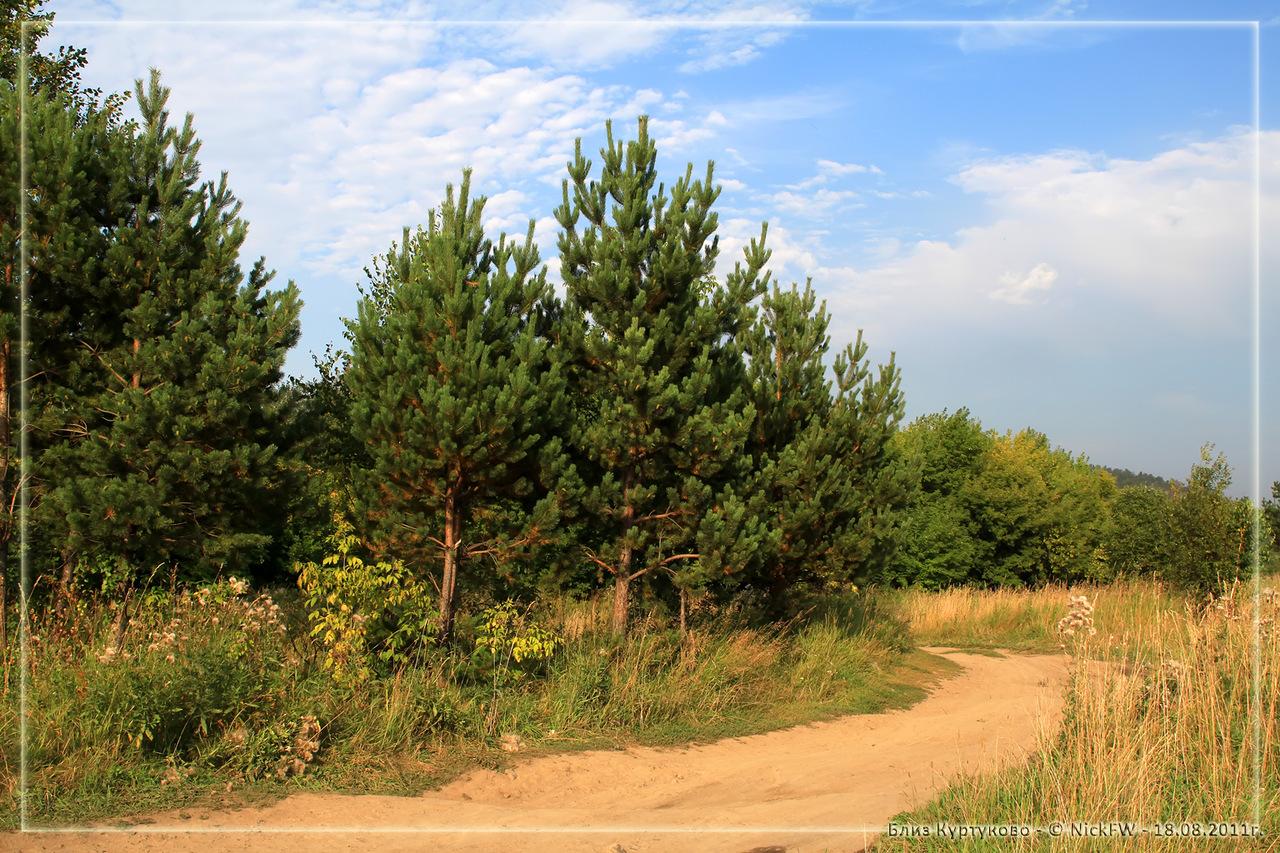Близ Куртуково (© NickFW 18.08.2011)