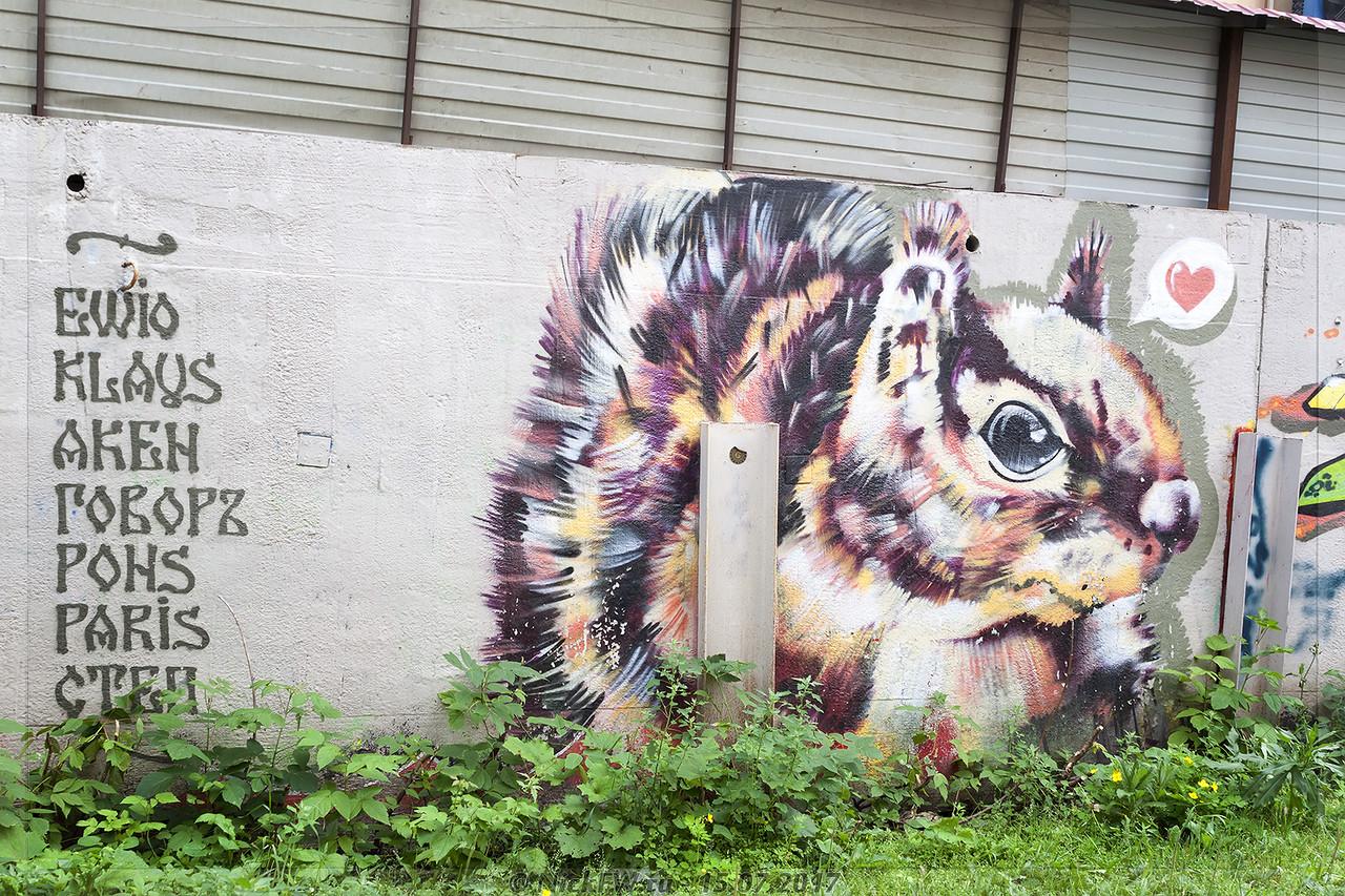 Графити - Белочка во дворах на Весенней (© NickFW - 15.07.2017)