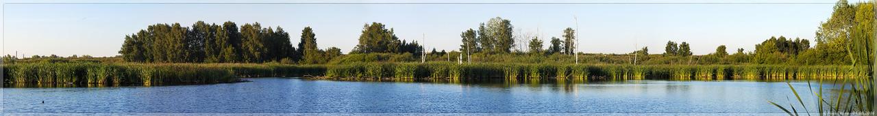 Улус-Мозжухинские водно-болотные угодья - панорама 11 кадров  (© NickFW - 04.08.2016)