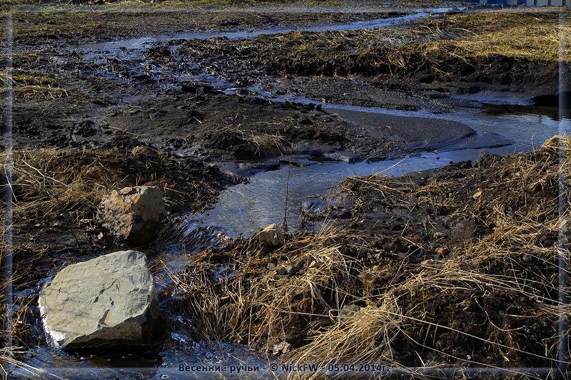 Весенние ручьи (© NickFW - 05.04.2014)