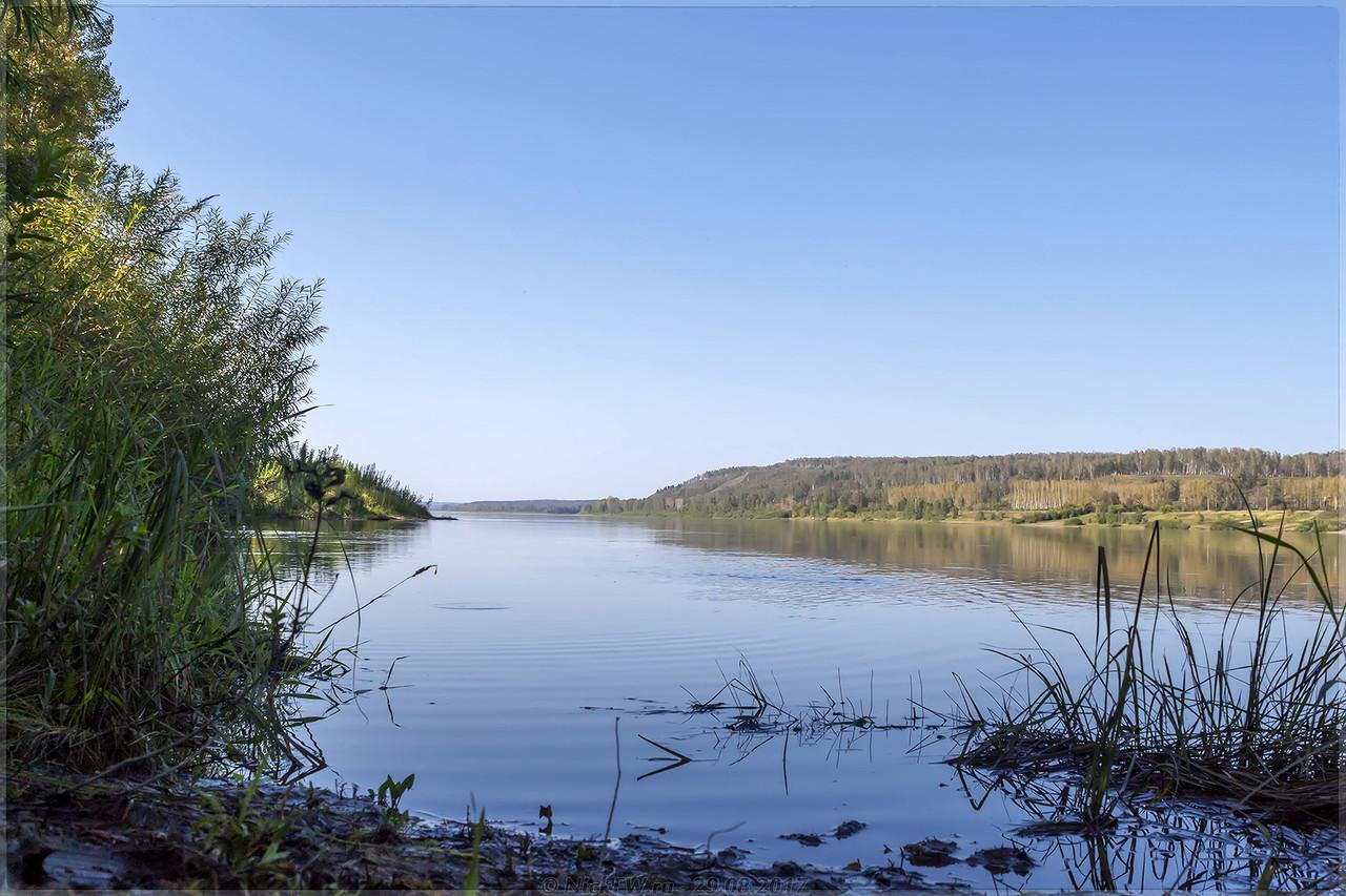 Заводь в устье Алфутки [© NickFW - 29.08.2017]