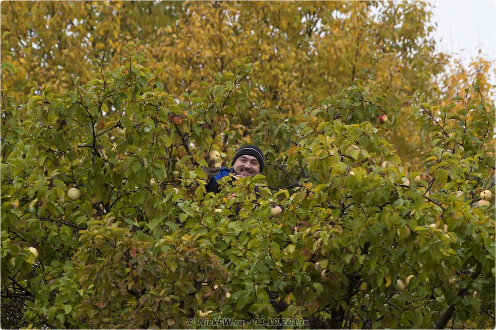 11. Сбор урожая - © NickFW.ru - 04.10.2019г.