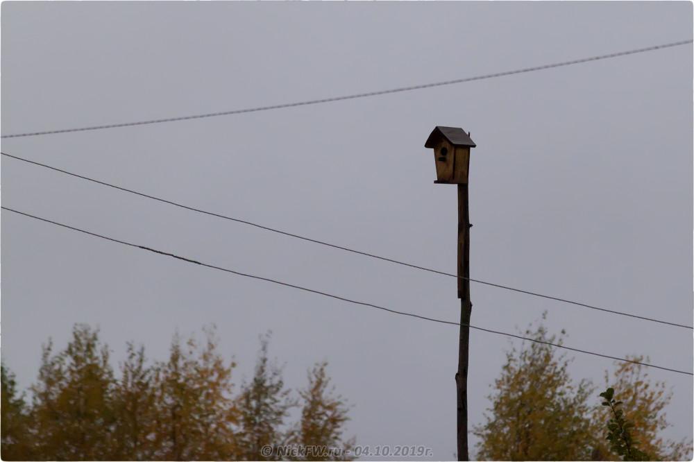 15. Барыгино - © NickFW.ru - 04.10.2019г.
