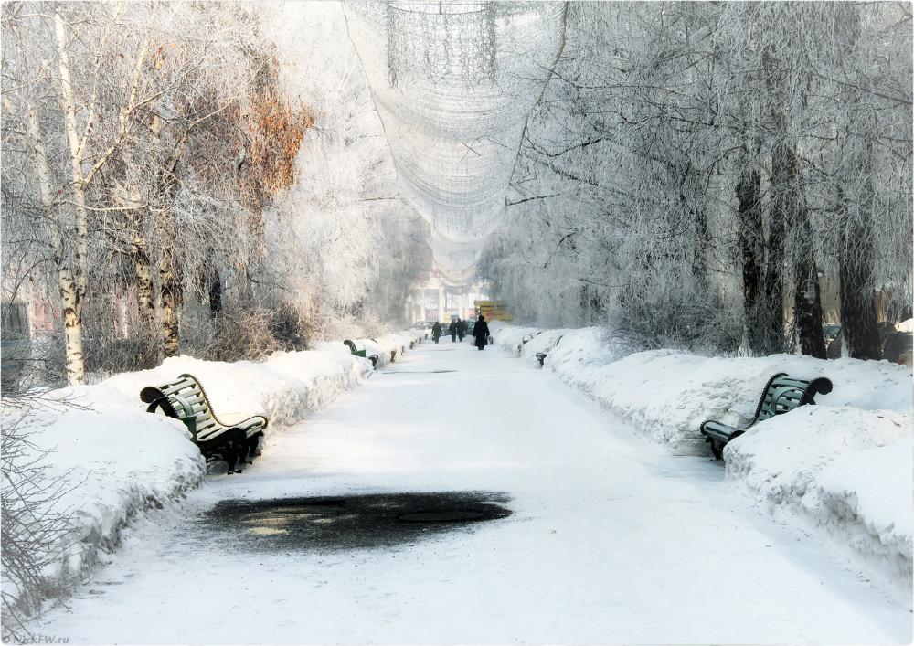 13. Аллея на улице Кирова - Февраль 2010г. © Николай Патрин [nickfw.ru]
