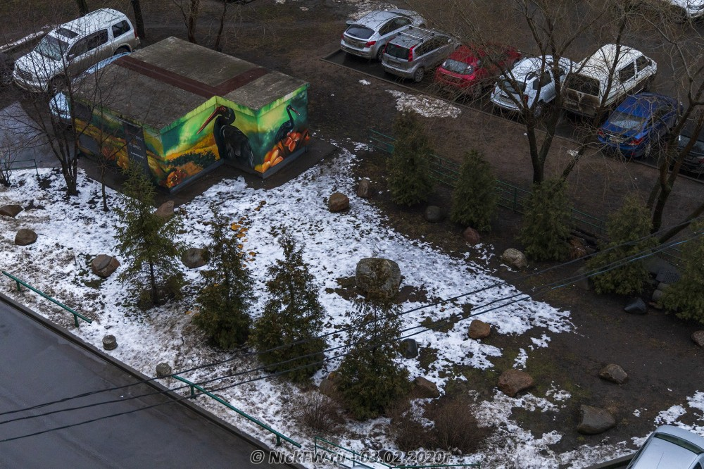 6. Вид на сад камней и Чёрных аистов © NickFW.ru - 03.02.2020г.